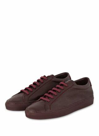 Paul Sneaker, Rot